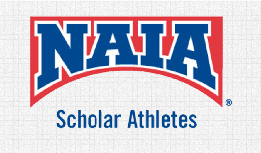 Photo for 2016 Daktronics-NAIA Football Scholar-Athletes Announced