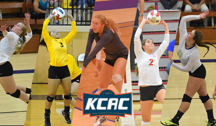 Photo for 2016 Volleyball All-Conference Selections Announced